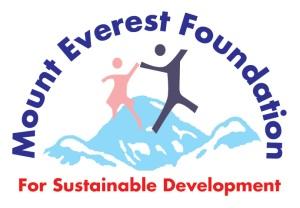 MEF_final-logo[1]